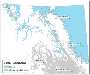 Fisher Boreal Habitat Zone