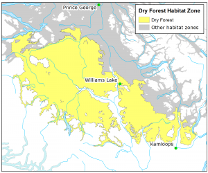 Fisher Dry Forest Habitat Zone