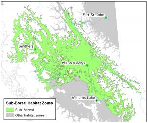 Fisher Sub-Boreal Habitat Zone